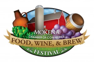 Mokena food & wine fest